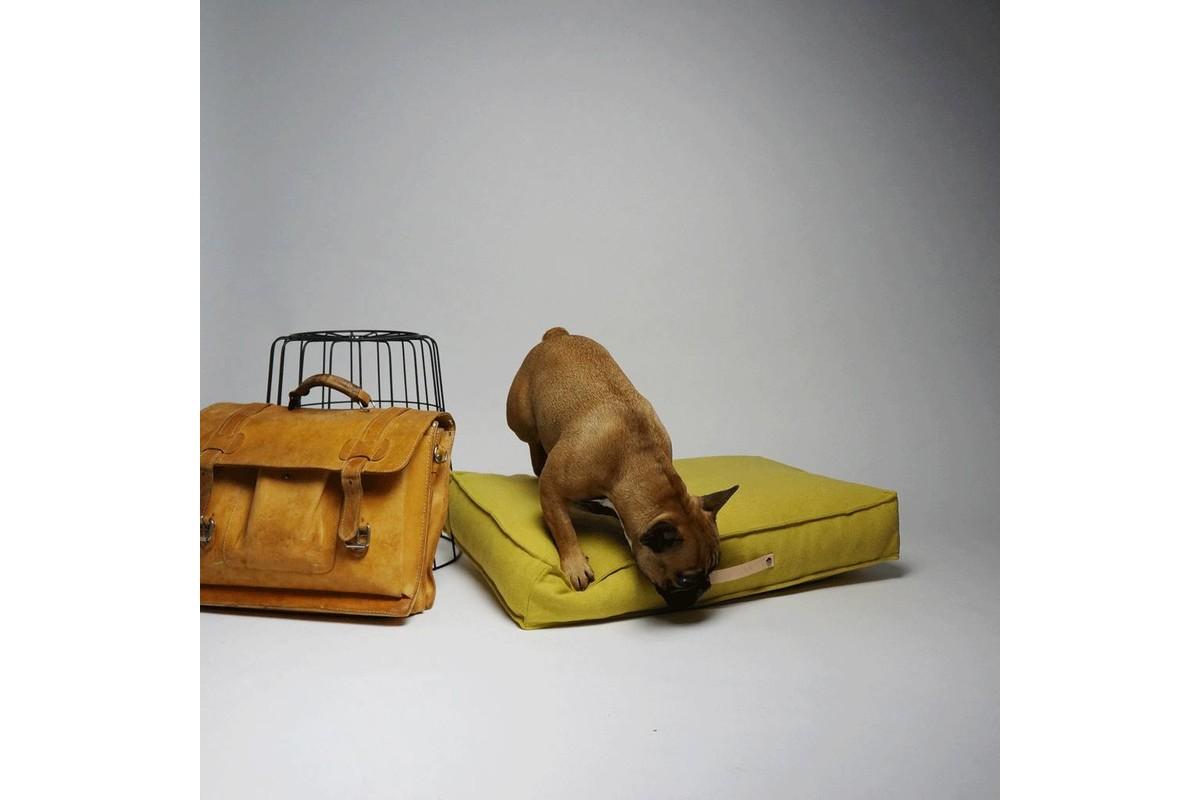 Labbvenn Movik hondenkussen honing