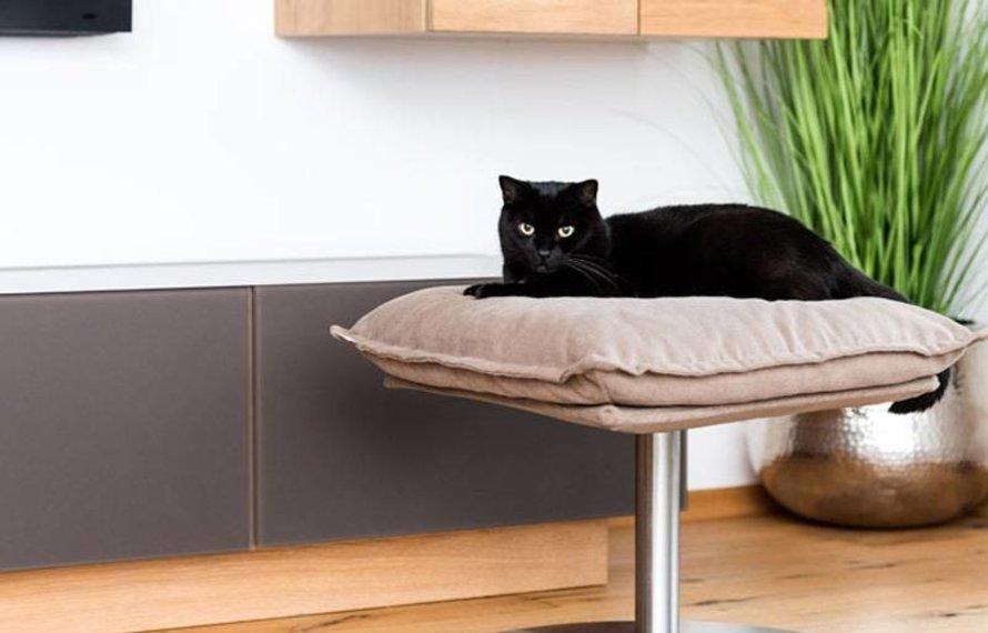 Hoe houd jij je huisdier alleen veilig thuis?