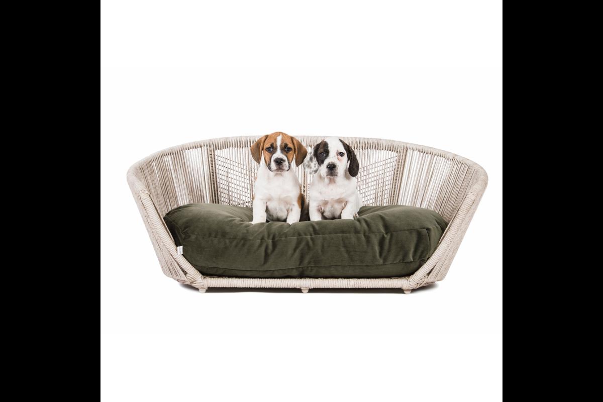 Laboni Design Dog Cushion Luna Velvet Olive