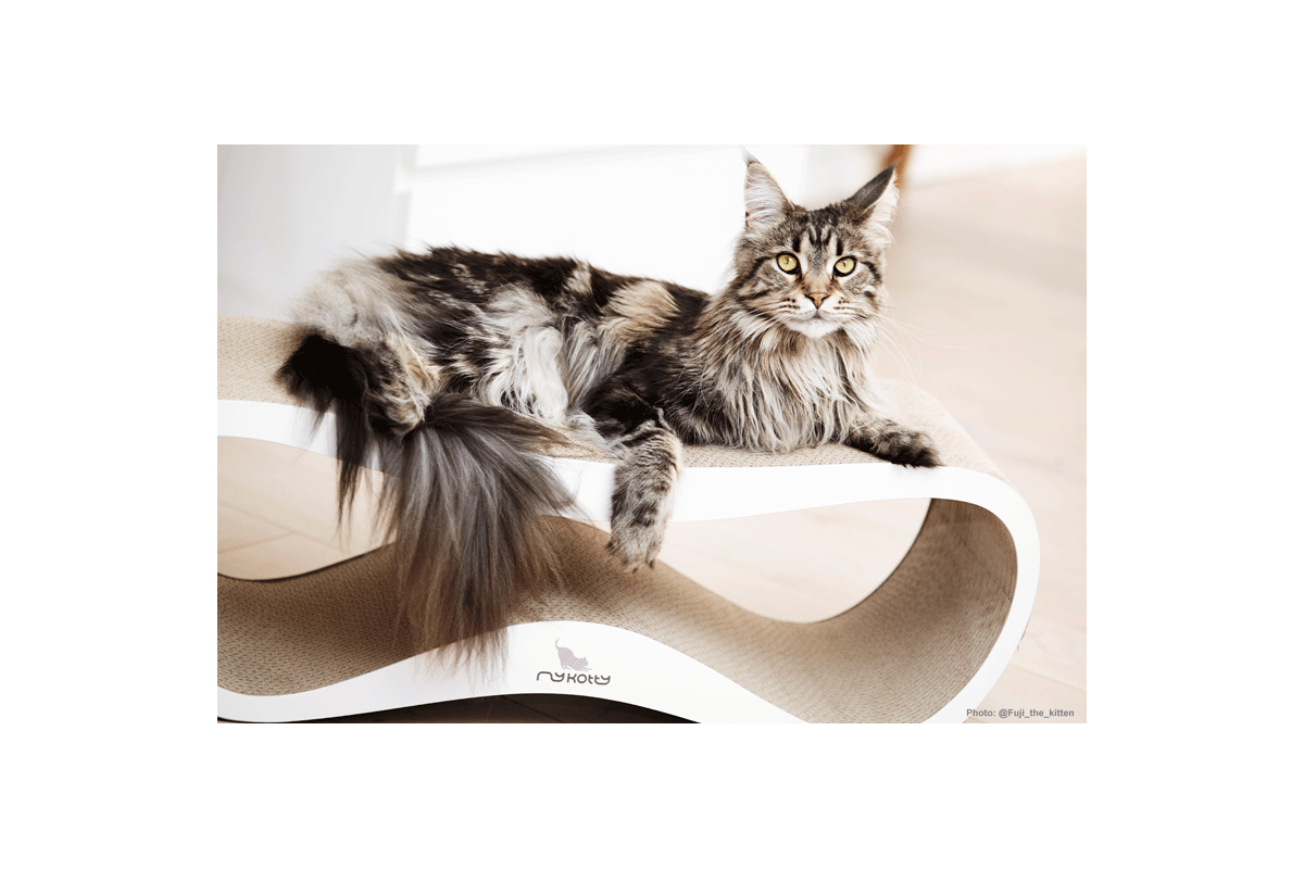 MyKotty Lui Cat Scratching Furniture White