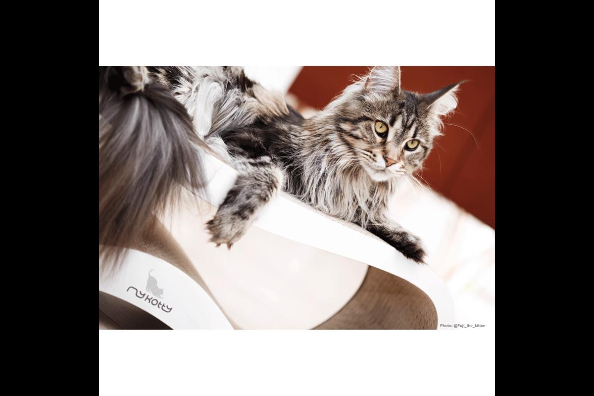 MyKotty Lui kattenkrabmeubel wit