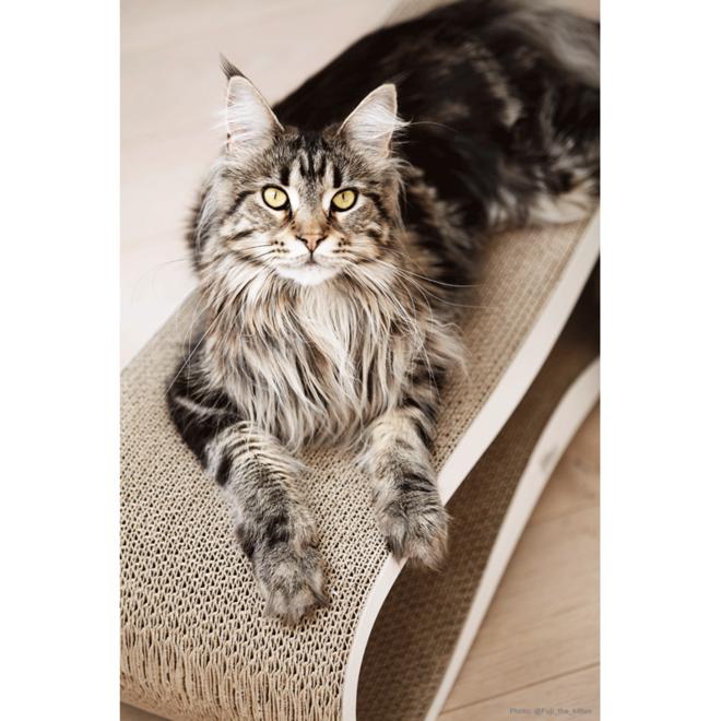 MyKotty Lui Cat Scratching Furniture White
