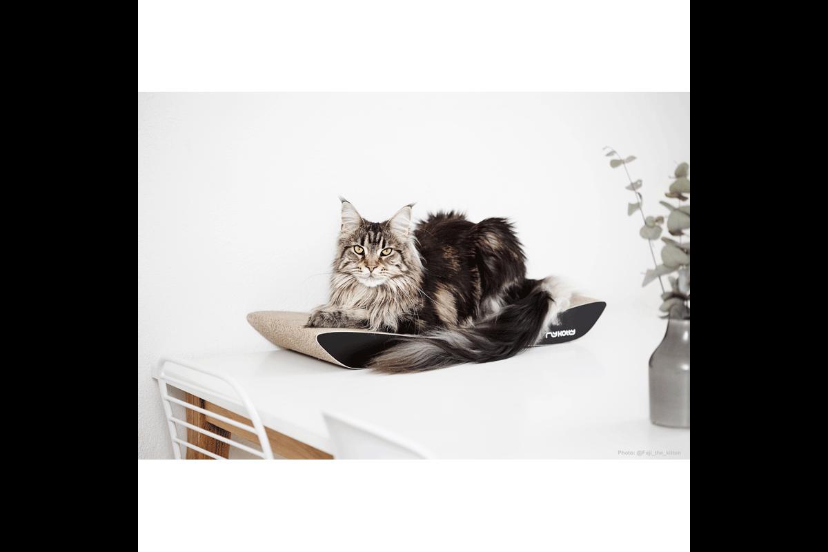 MyKotty Scratching Furniture Tobi Black