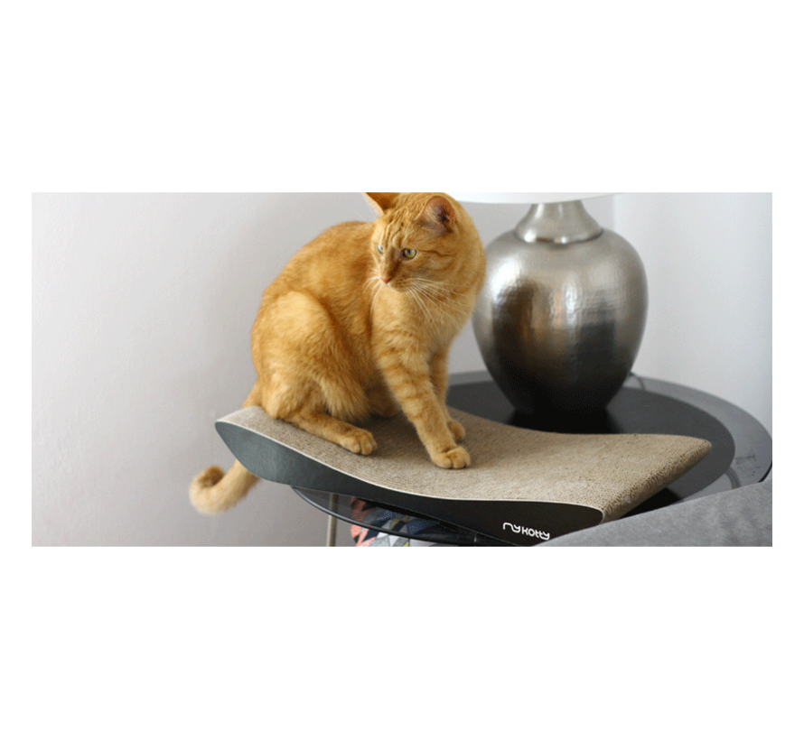 MyKotty Scratching Furniture Tobi Black