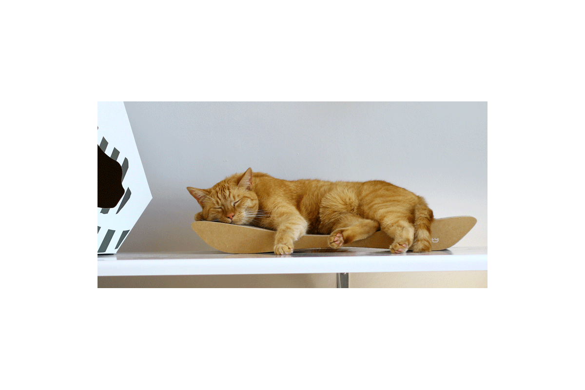 MyKotty Scratching Furniture Set Lui Black + Tobi Black