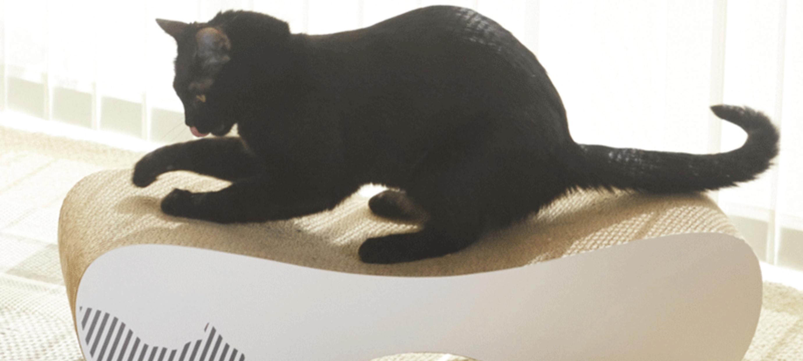 Betaalbaar design kattenmeubels van MyKotty
