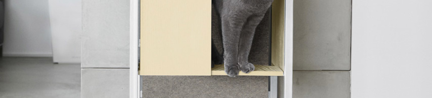 Choose the best scratching post for your cat
