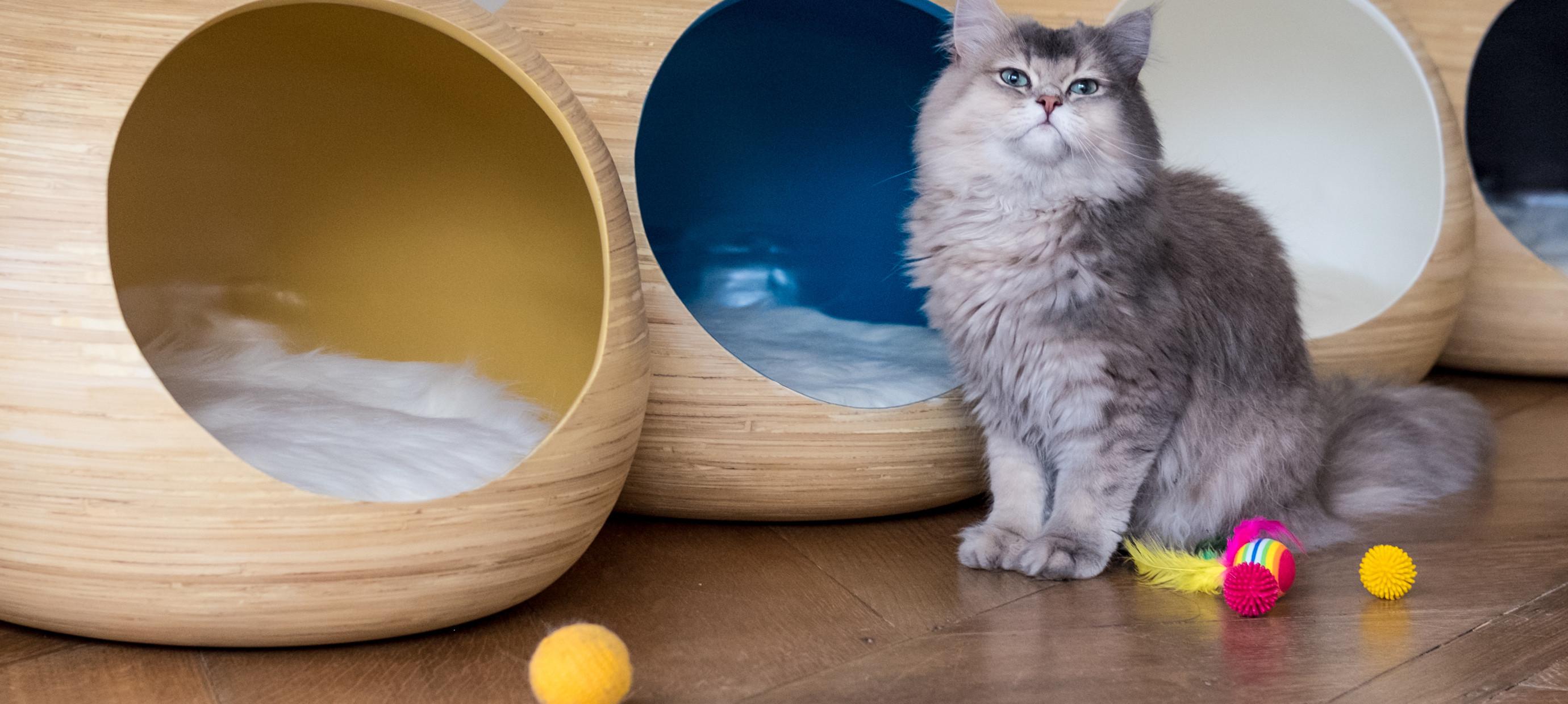 Lassen sie Ihre Katze ultimativ genießen in einem luxuriösen Katzenkorb