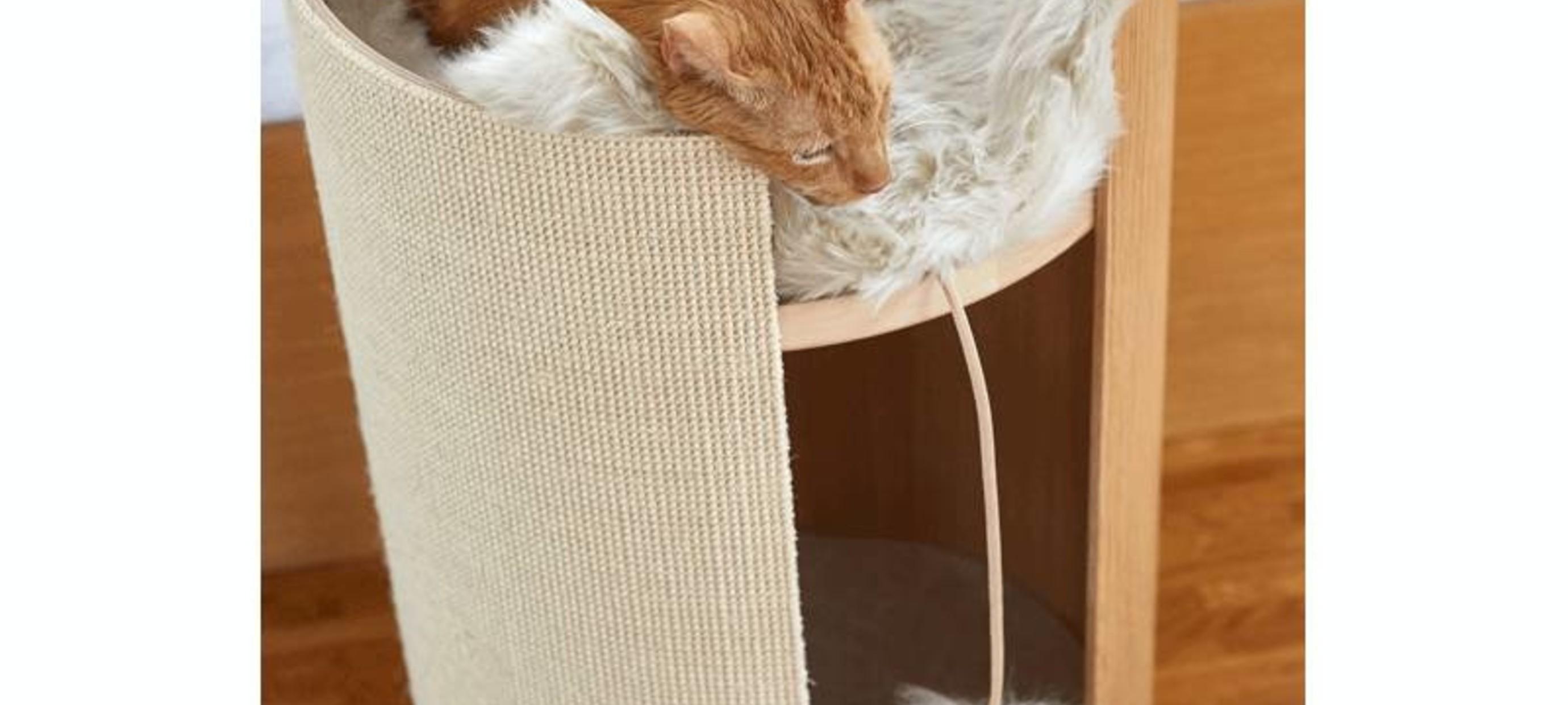 Was sind die Kriterien für ein gutes Spielzeug für Ihre Katze?