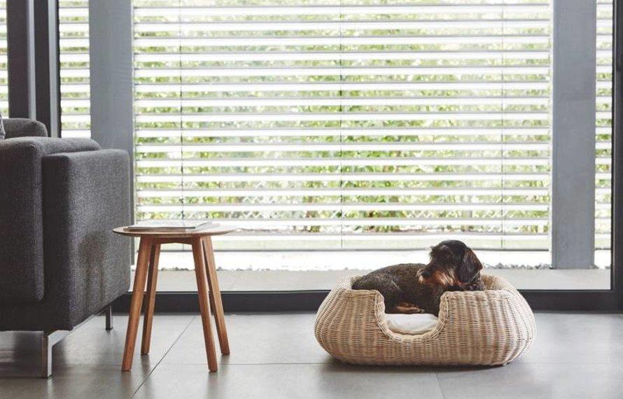 MiaCara hondenmand - Knusse eyecatchers & design