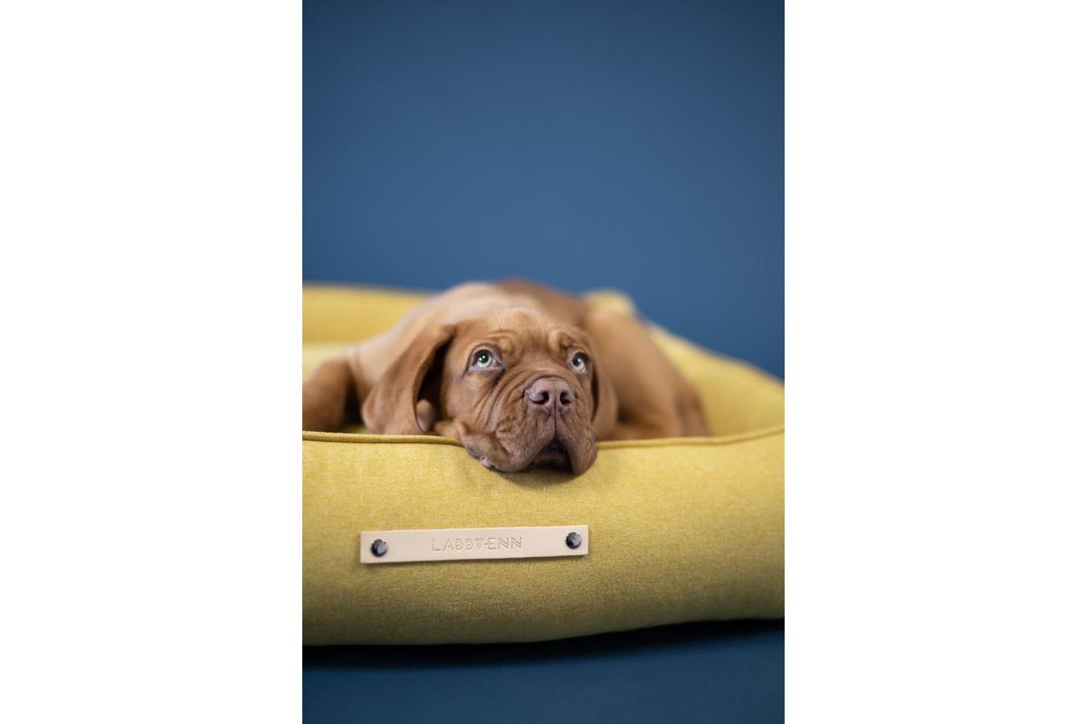 Labbvenn Movik Hundebett Honig