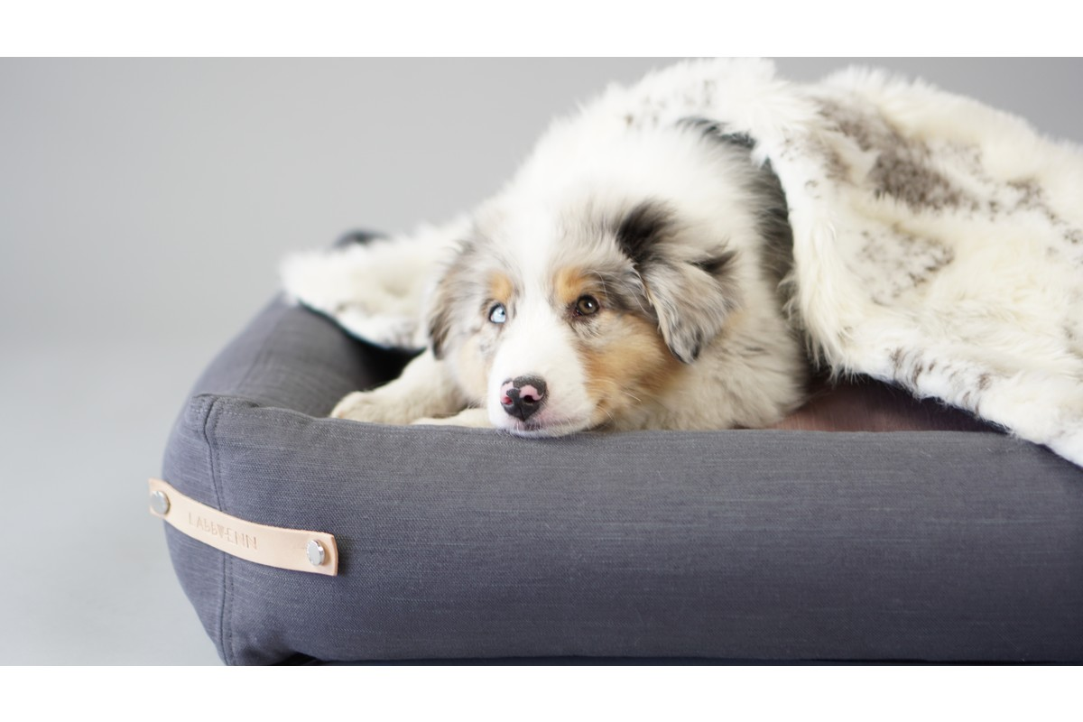 Labbvenn Stokke Dog Bed Grey