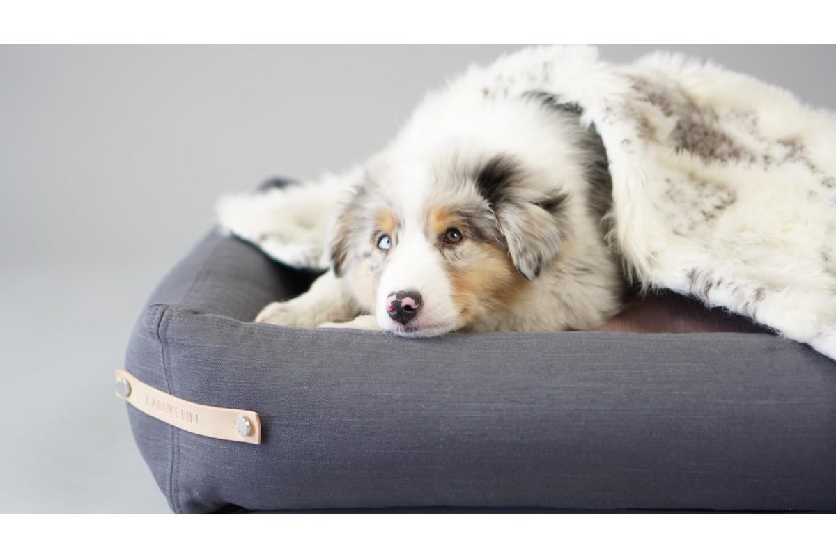 Labbvenn Stokke Hundebett Grau