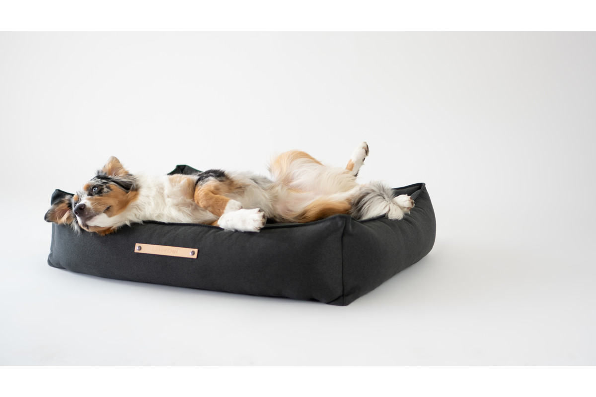 Labbvenn Töve hondenkussen antraciet