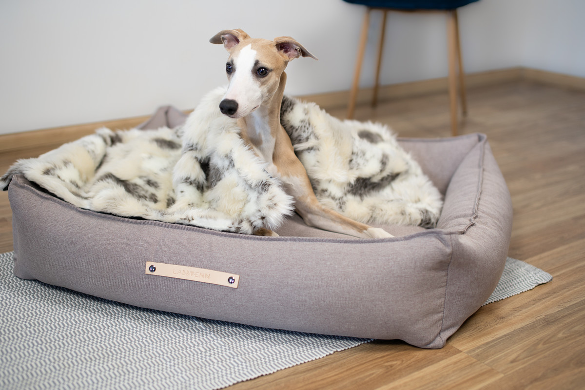 Labbvenn Töve Dog Bed Beige