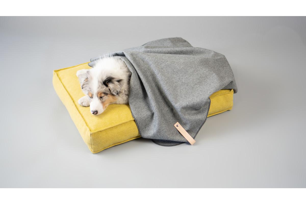 Labbvenn Åsnen Hundedecke braun