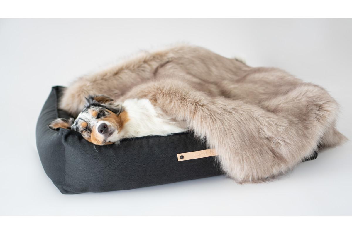 Labbvenn Föra Hundedecke Capuccino