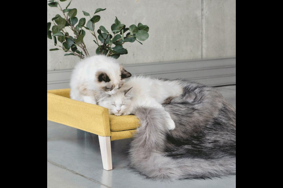 Labbvenn Lulu cat bed honey
