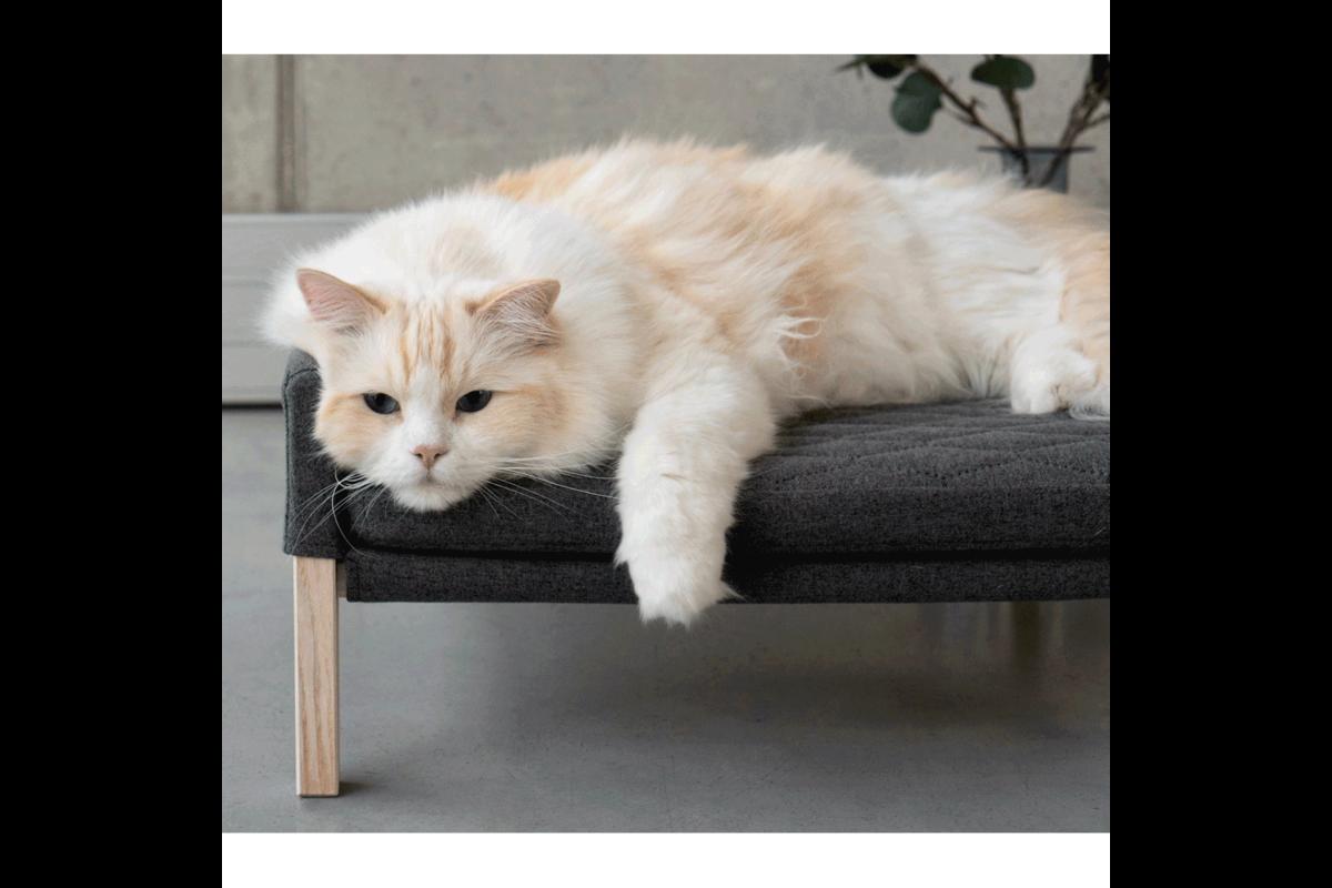 Labbvenn Lulu cat bed anthracite