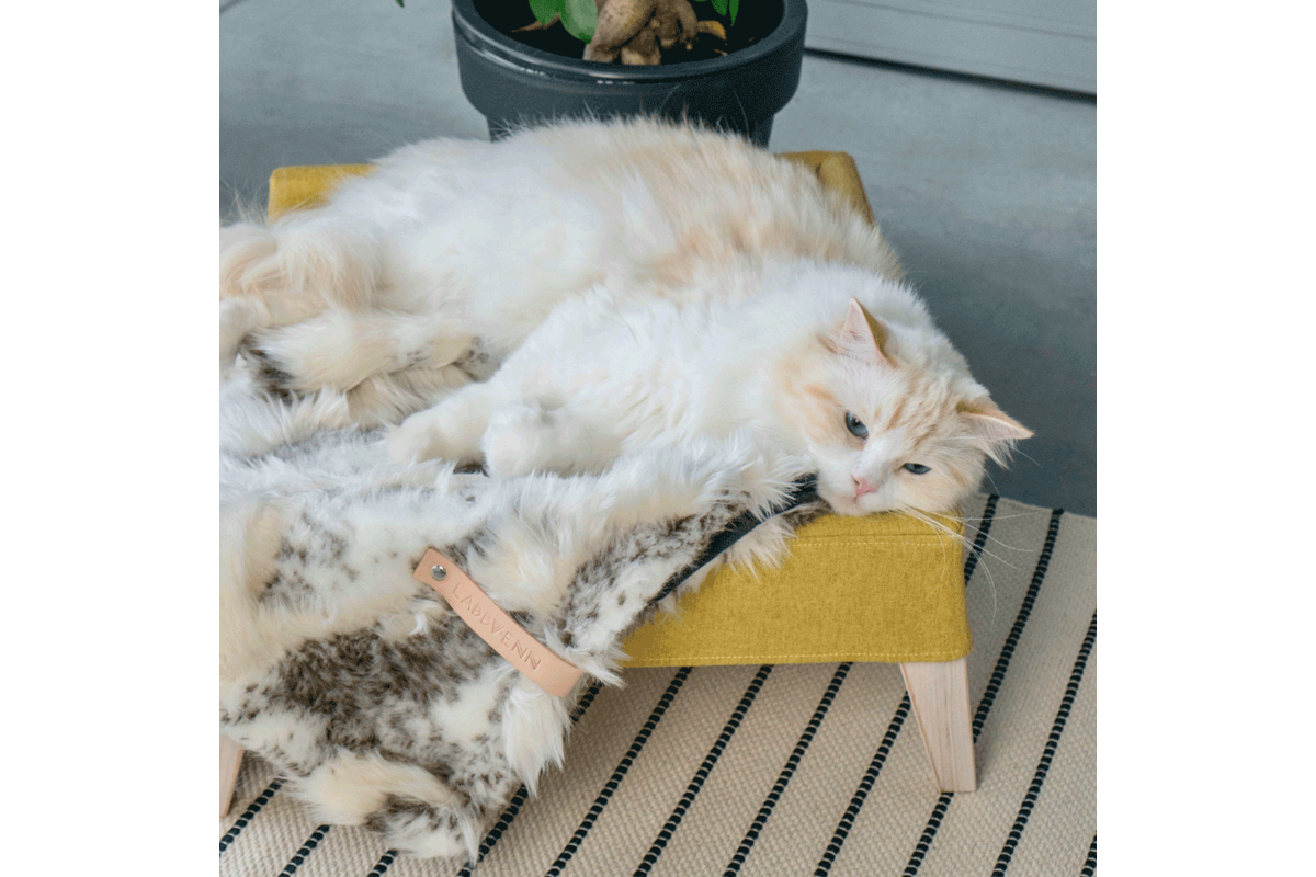 Labbvenn set Kikko & Lulu honing