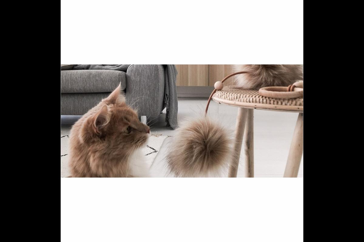 Labbvenn Tollo kattenspeeltje grijs