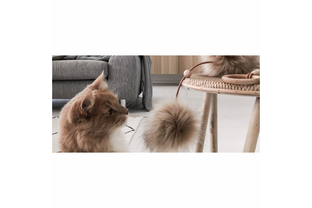 Labbvenn Tollo kattenspeeltje bruin