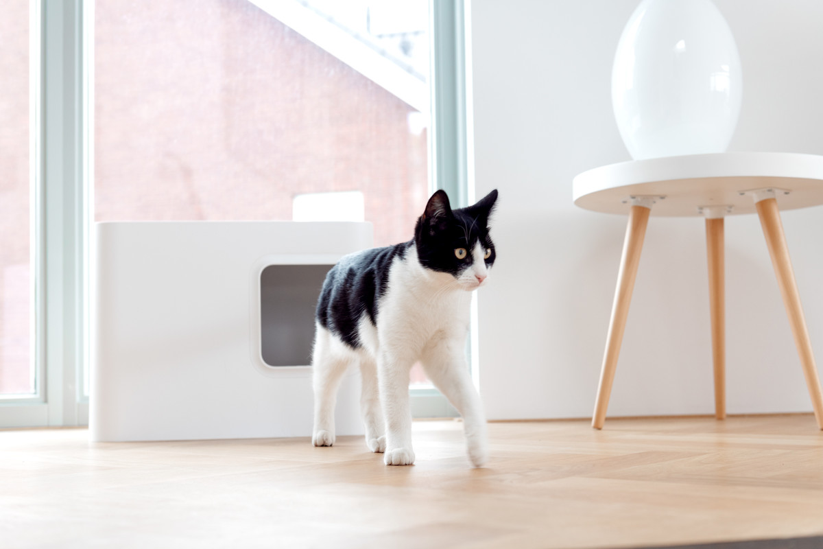 Hoopo® Dome Kattenbak Wit