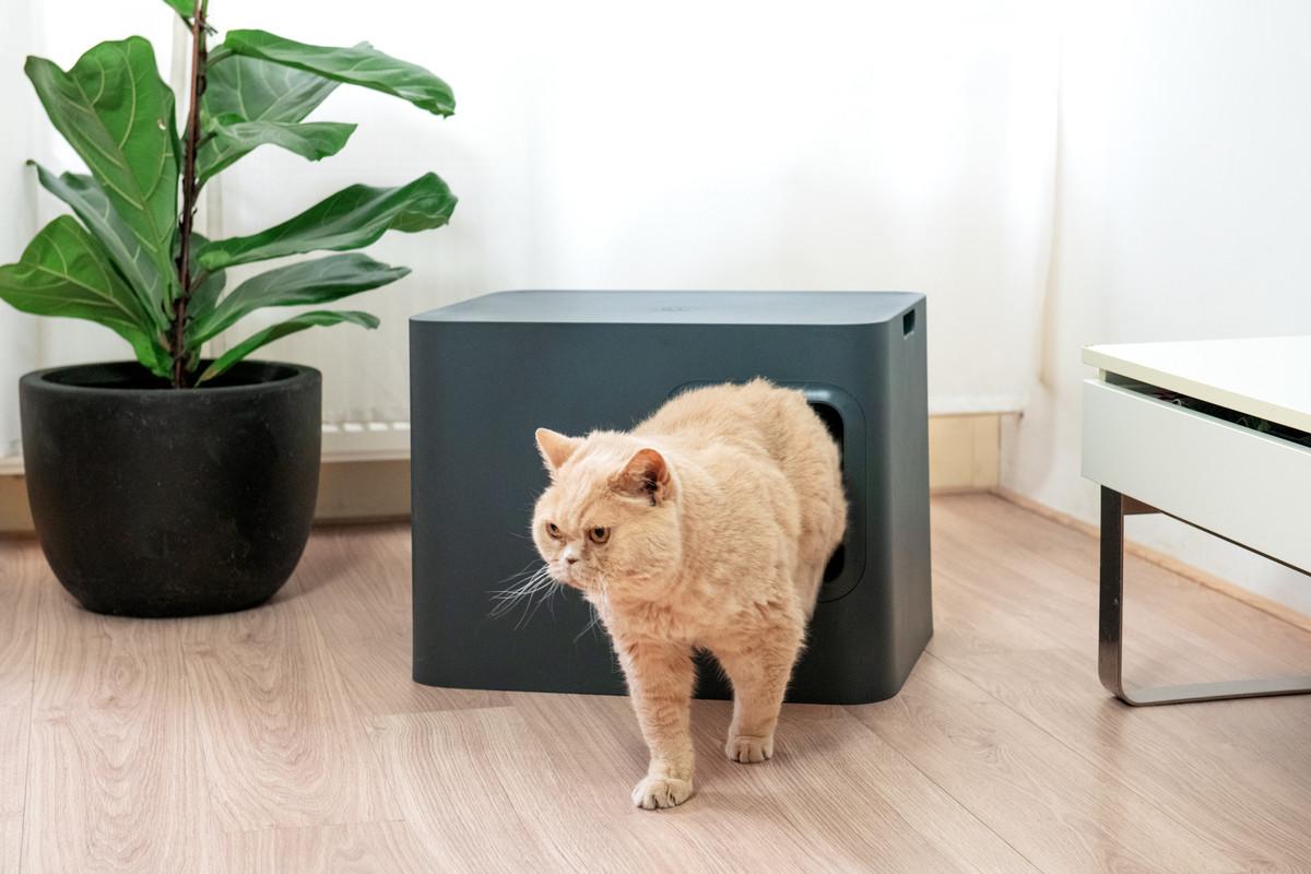 Hoopo® Dome Kattenbak Grijs