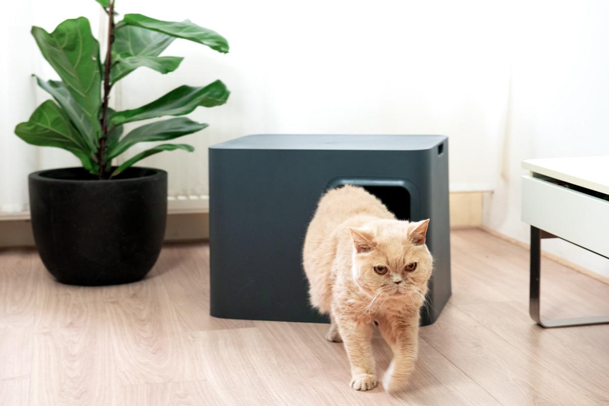 Hoopo® Dome Katzenklo Grau