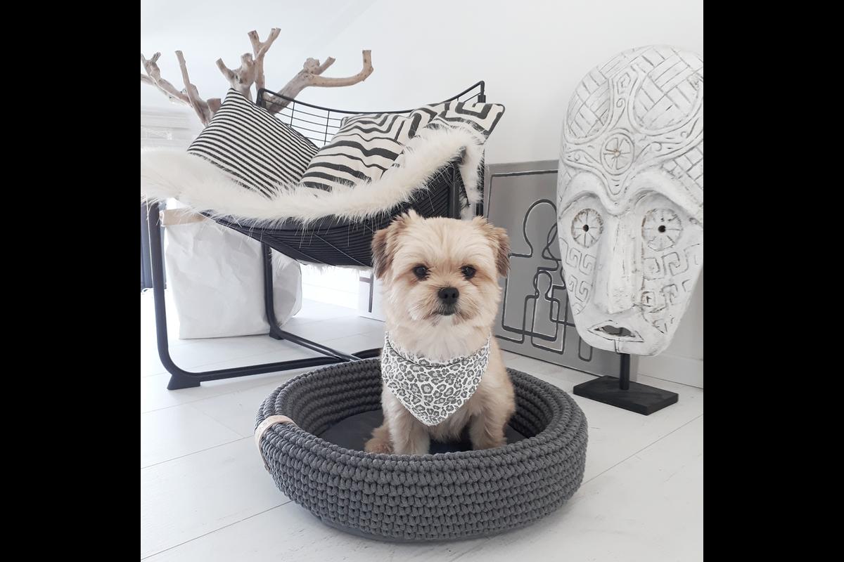 Labbvenn Coco dog bed Anthracite