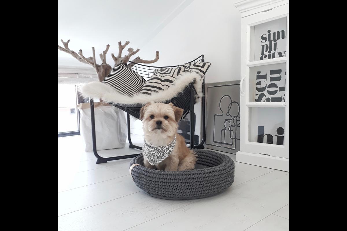 Labbvenn Coco dog bed brown