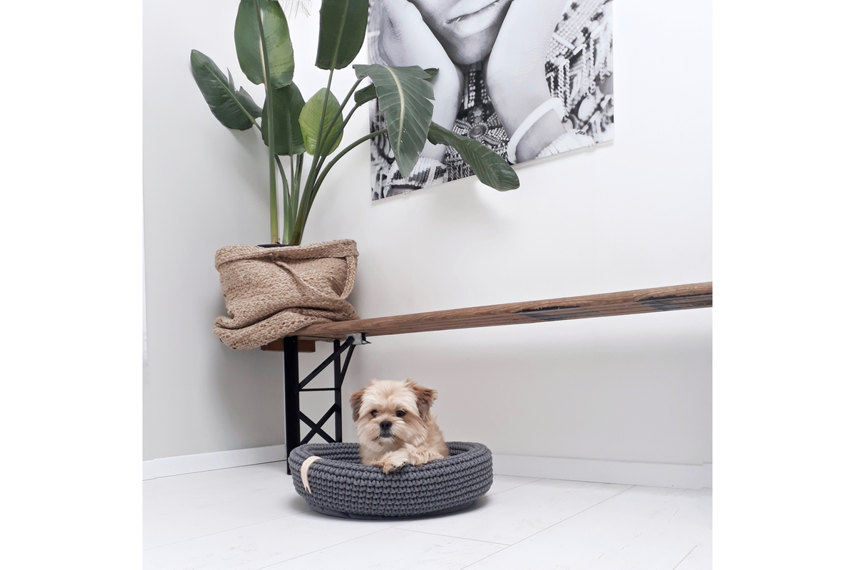 Labbvenn Coco hondenmand groen