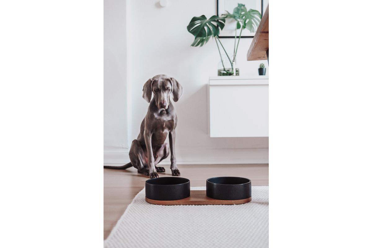 Labbvenn Vuku Ceramic Napfständer 2 Näpfe Weiß&Schwarz