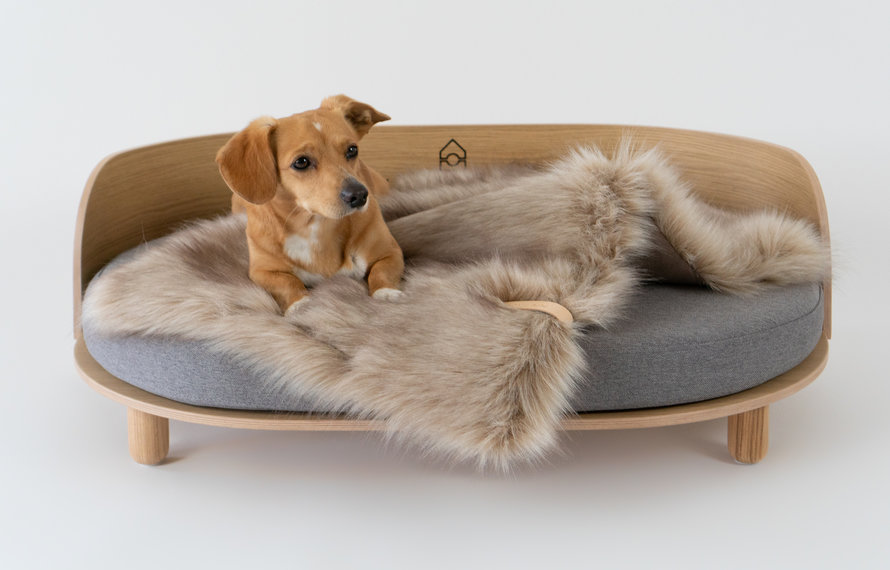 Why a Good Dog Bed is important