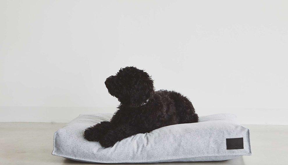 Wie findet man das beste Hundekissen?