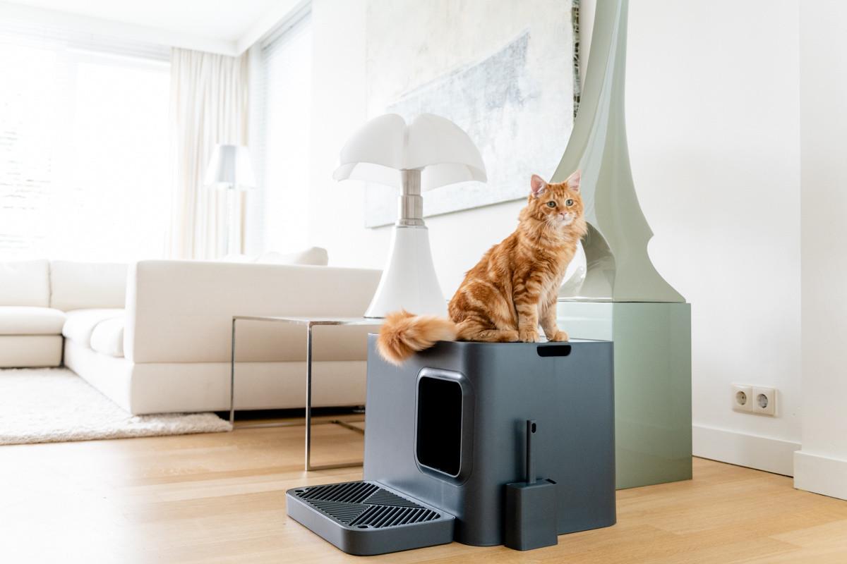 Hoopo® Dome Plus Kattenbak Grijs