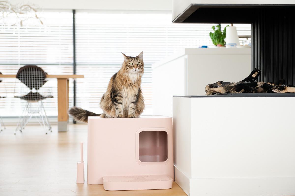 Hoopo® Dome Plus Kattenbak Roze