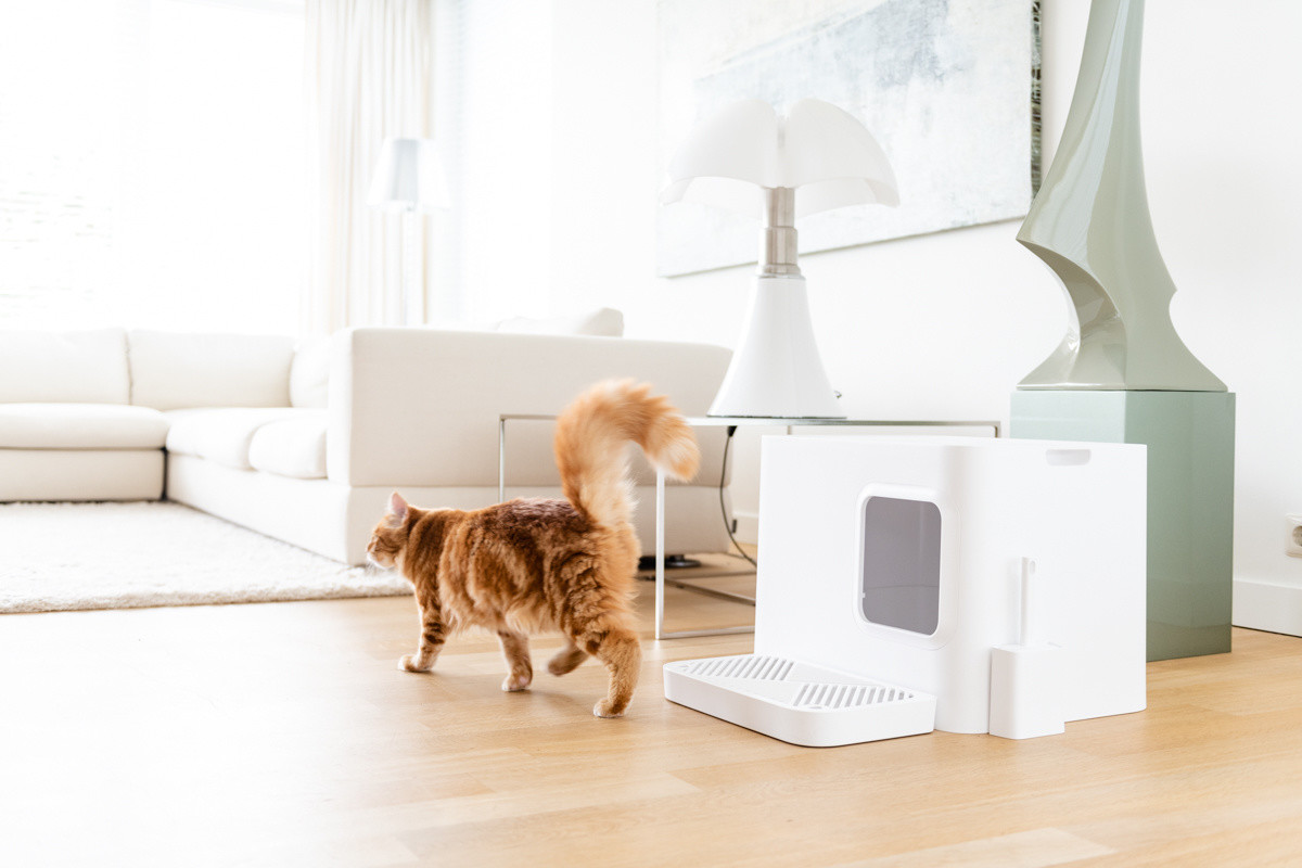 Hoopo® Dome Plus Kattenbak Wit