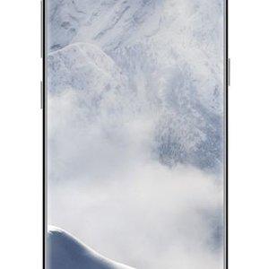 Samsung Samsung Galaxy S8+ Zilver