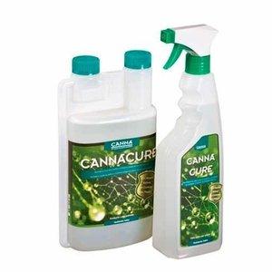 Canna Canna Cure