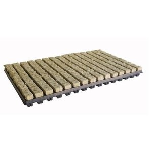 Cultilene Plug tray 77 stuks p/ tray