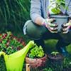 Tuinbenodigdheden