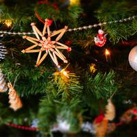 Hoe hou je kerstboom mooi groen.