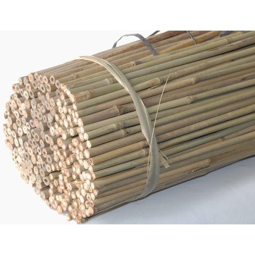 Tonkin sticks Natural (bamboo sticks)