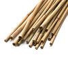 Bambusstöcke