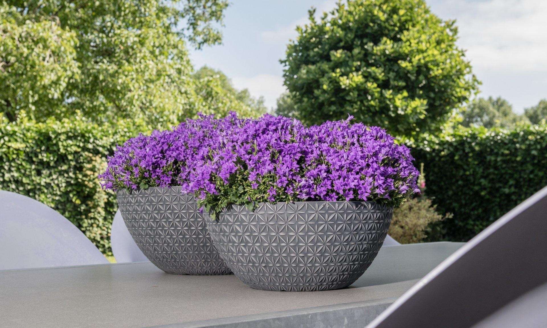 Design Pots