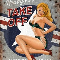 ready for take off pin-up metal plate 40x30CM