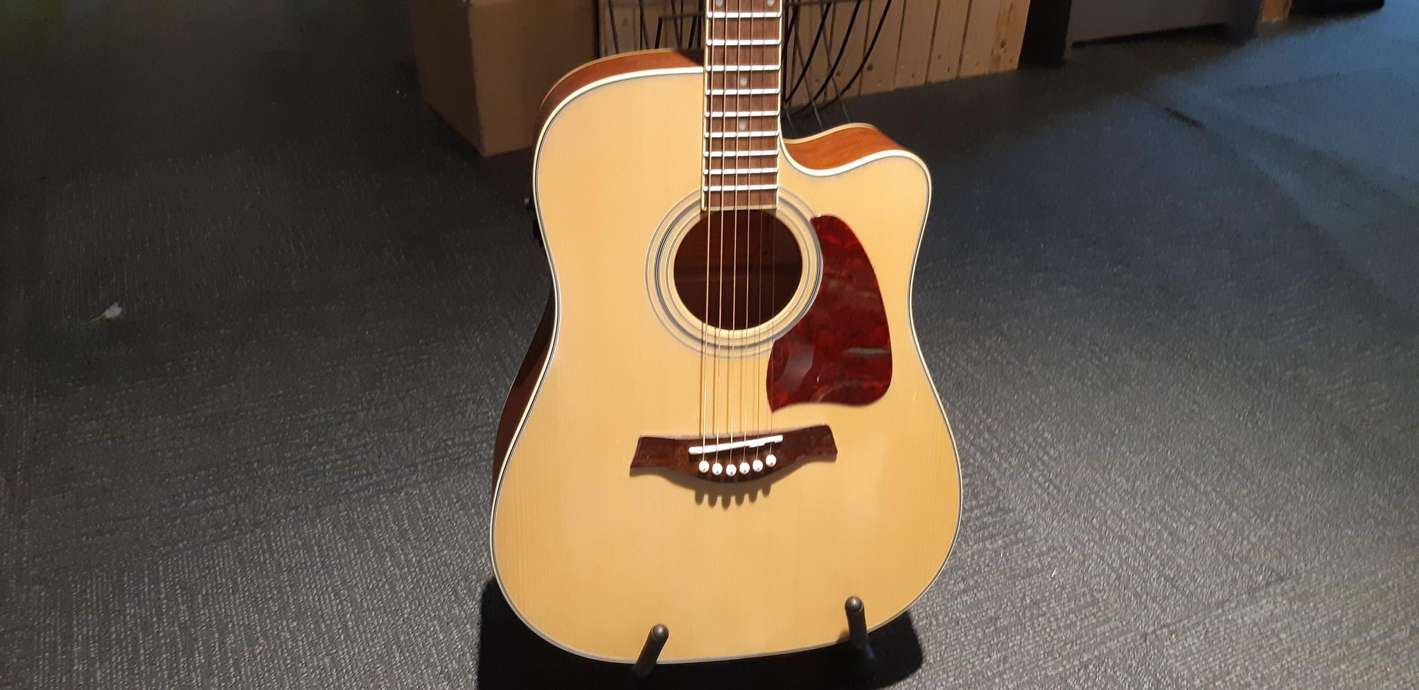 richwood RD-16-CE Richwood Artist Series akoestische gitaar