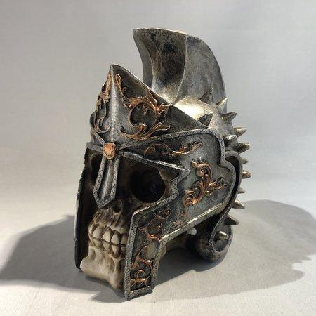 Gladiator schedel