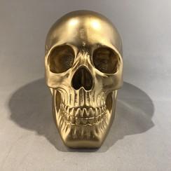 Schedel goud - 140101